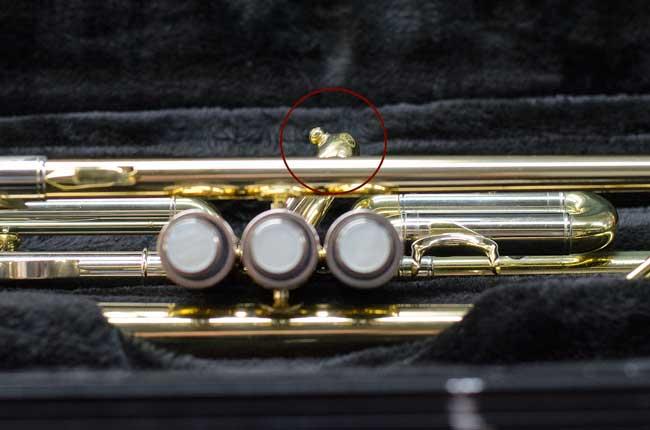 trumpet-closeup